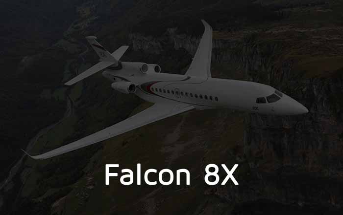 Dassault Falcon 8X Private Jet Shaded